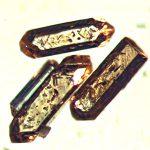 Cristales de circones.