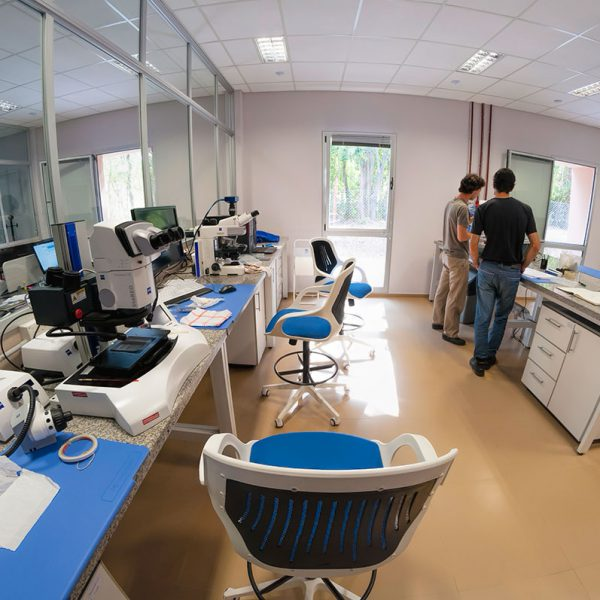 View of the labs.